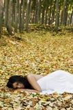 Laying Beauty Royalty Free Stock Image
