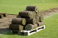 Laying of a grass rolled lawn at stadium Stock Photos