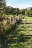 Laying out stock fencing. Man laying out stock fencing in preparation before nailing to posts Royalty Free Stock Images