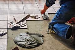 man laying floor tile Stock Image