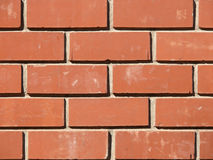 Laying of a wall from a brick Royalty Free Stock Photography