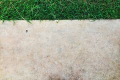 Layout of deep green freshand concrete ground smooth wall royalty free stock photography
