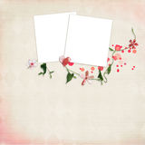 Layout with frames for photos. Decorated with flowers Royalty Free Stock Photos