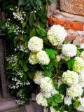 Lazarica-Kirche für Ostern verzierte mit Blumen stockfotografie