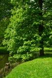 Lazenki park, Warsaw Royalty Free Stock Photo