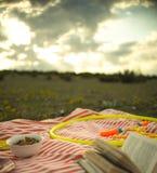 Lazer da mola na grama Fotografia de Stock
