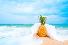 Lazer no conceito do verão e das férias de verão Foto de Stock Royalty Free