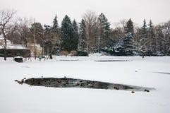 Lazienki公园在冬天 免版税图库摄影