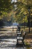 Lazienki公园的秋天风景在华沙,波兰 免版税图库摄影