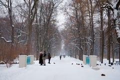 Lazienki公园 免版税库存图片