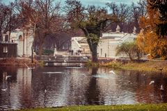 Lazienki-Park Stockbilder
