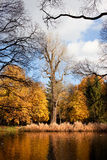 Lazienki Park Autumn Scenery Royalty Free Stock Images