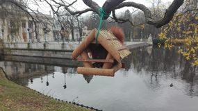 Lazienski-Park Warschau Lizenzfreies Stockbild