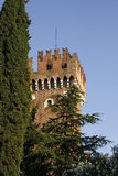 Lazise, Scaliger Castle, Lake Garda, Italy Stock Images