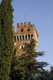 Lazise, Scaliger castle, Lake Garda, Italy Stock Images