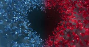 Lazo azul rojo 4k del Placeholder del fondo de la forma del corazón del amor de Rose Flower Petals In