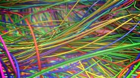 Lazo de la locura del alambre