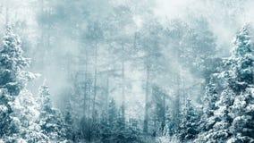 Lazo del fondo del invierno almacen de metraje de vídeo