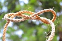 Lazo del nudo de la cuerda con los bordes doblados Imagenes de archivo