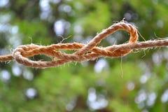Lazo del nudo de la cuerda con los bordes rectos Imágenes de archivo libres de regalías