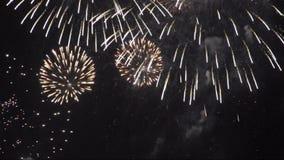 Lazo inconsútil del vídeo de los fuegos artificiales HD metrajes