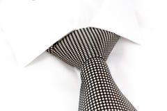Lazo manchado blanco y negro Fotografía de archivo libre de regalías