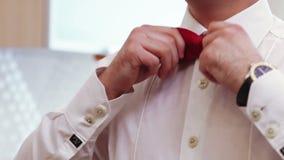 Lazo masculino de la camisa metrajes