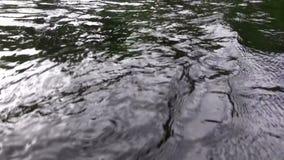 (Lazo perfecto) primer enojado oscuro de las aguas almacen de video