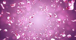 Lazo rosado rojo romántico 4k de Rose Sakura Flower Petals Falling Background que vuela