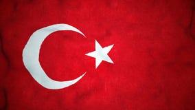 Lazo video inconsútil de la bandera turca almacen de metraje de vídeo