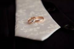 Lazo y anillos Imagen de archivo