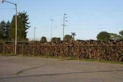 Lazos de ferrocarril al lado de pistas fotografía de archivo
