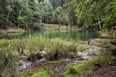 Lazurowy jezioro, Polska Obrazy Royalty Free