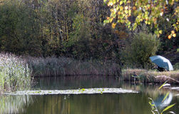 A Lazy Autumn Afternoon. One of several small fishing lakes in a country park in Kent. The park attracts lots of different activities but this looked Royalty Free Stock Image