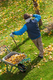 Lazy garden cleaning Royalty Free Stock Photography