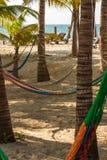 Lazy hammocks on sandy beach royalty free stock photography