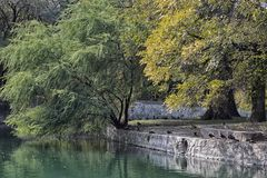 Lazy River in the park. City park with lazy river winding along stacked stone wall. Large willow tree hanging over side of bank towards the water. birds and Royalty Free Stock Image