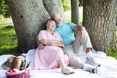 Lazy Summer Days. Senior couple relaxing on a picnic in the park Royalty Free Stock Image