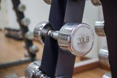 20lb dumbbell na stojaku w treningu pokoju Zdjęcia Royalty Free