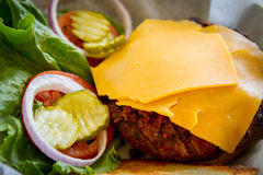 1/2 LB łosia hamburger Obraz Royalty Free