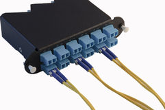 LC Fiber Module Royalty Free Stock Image