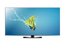 LCD het scherm van TV vector illustratie