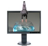 LCD Monitor and Diver. Isolated over a white background Royalty Free Stock Image