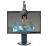 LCD Monitor en Duiker Royalty-vrije Stock Afbeelding