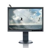 LCD Monitor and Seascape. Isolated over a white background Stock Photo