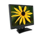LCD screen with gorgeous flower #2 Royalty Free Stock Image