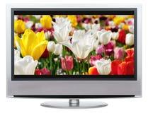 LCD Televisie Royalty-vrije Stock Fotografie