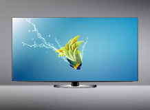 LCD tv screen. Black LCD tv screen and fish with water splash .  (with clipping work path Royalty Free Stock Images