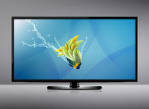 LCD tv screen. Black LCD tv screen and fish with water splash .  (with clipping work path Stock Photo