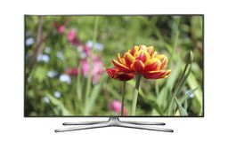 LCD TV with tulip on screen. LCD TV isolated on white background with tulip on screen Royalty Free Stock Photos